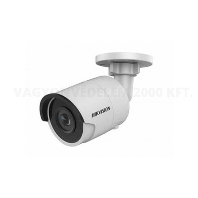 Hikvision DS-2CD2055FWD-I IP kamera
